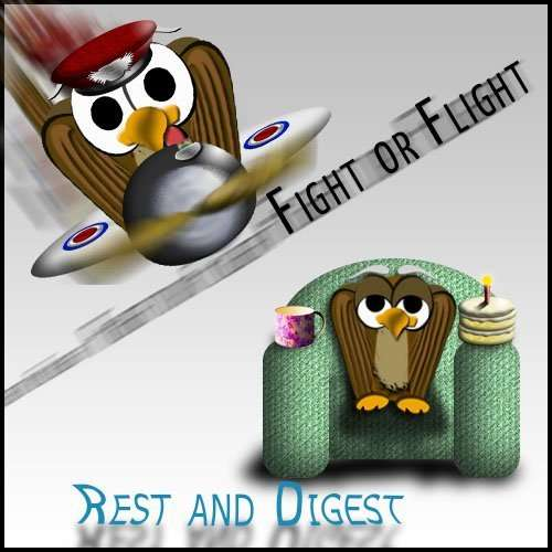 image of fight or flight